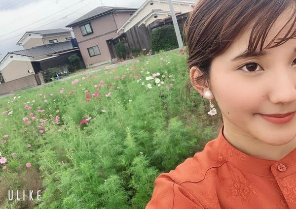 *エミフルコスモス2020*18日(日)まで!<br>恋泉畑へ急げ~!