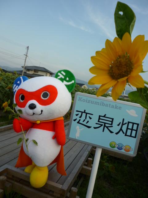 https://emifull.jp/news/P1090533.png