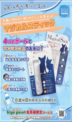 5・6月のモバコレ!!