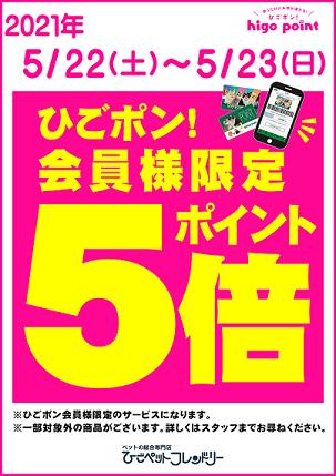 5/22(土)~5/23(日)迄ポイント5倍デー