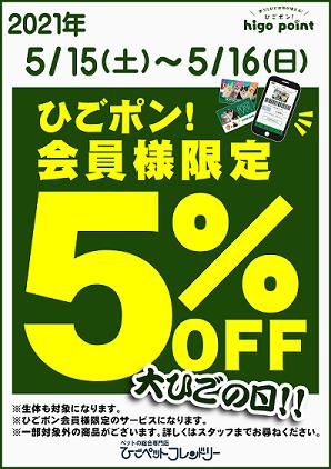 大ひごデー5/15(土)~5/16(日)開催!!