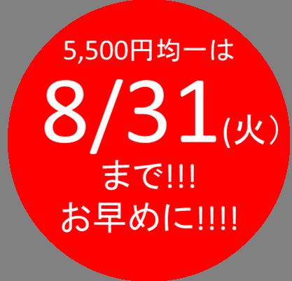 【 8/31(火)まで 】 ★ 大好評5,500円(税込)均一 ★